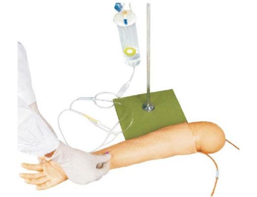 高级儿童手臂静脉穿刺模型KAS-S4