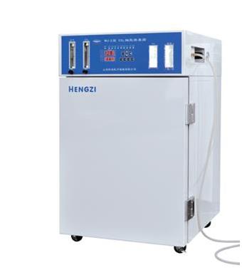 二氧化碳细胞培养箱HWJ-2-80