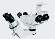 XT-X-4B型手术显微镜